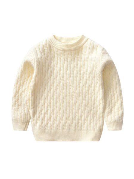 Kid Unisex Solid Color Sweater BOYS Unisex
