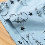 Dinosaur Print Pajama Set For Boys Top With Shorts 4