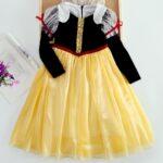 Princess Cosplay Party Kid Girl Mesh Dress  Wholesale 4